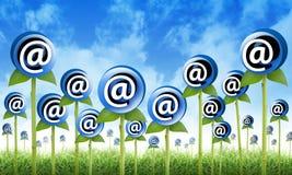 e-posten blommar att spira för inboxinternet Royaltyfria Foton