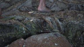 E r Να ανεβεί τριών ξυπόλυτο τουριστών, που αναρριχείται στην κινηματογράφηση σε πρώτο πλάνο πετρών Άνθρωποι που εξερευνούν το νη φιλμ μικρού μήκους