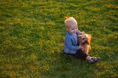 E r r 小孩男孩享受与狗的休闲 库存图片