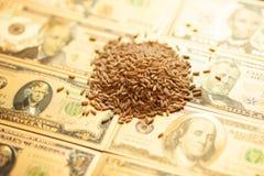 E 农业收入概念 免版税库存照片