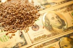 E 农业收入概念 免版税库存图片