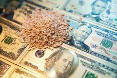 E 农业收入概念 库存图片