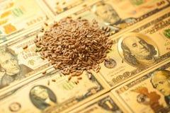 E 农业收入概念 库存照片
