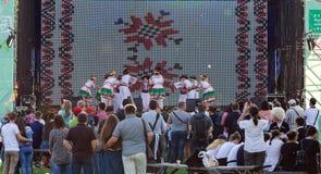 Celebration of the `Day of Kiev` in Pirogovo