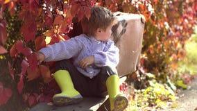 Un chico soñado se sienta en el parque y disfruta del clima otoñal Felices fiestas infantiles Ambiente otoñal metrajes