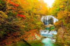 E r Autumn Leaves In Japan fotografie stock libere da diritti