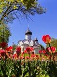 E r Die Kirche von St.-Basilikum das gro?e auf dem H?gel auf einem Hintergrund von roten Tulpen stockfotos