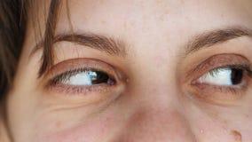Mädchen hebt Augenbrauen Game-Augenbrauen Flirt Braun Augen schöne Mädchen nah Portrait des weißen Mädchens stock footage