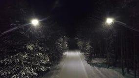 Μονοπάτι στο πάρκο τη νύχτα με χιόνι Αποκοπή Επάνω όψη μυστηριώδους και τρομακτικού σβησίματος φώτων στα ίχνη του δάσους απόθεμα βίντεο
