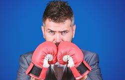 Бизнесмен носит перчатки бокса r r Завоюйте успех стоковое изображение