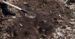人用地覆盖坑 《死动物布里斯》 为动物而墓 Prores,慢动作 股票录像