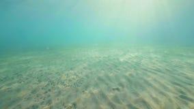 Vista submarina de la luz del sol a través del océano azul y el fondo de arena Sol en aguas transparentes y fondos marinos Agua s almacen de metraje de vídeo