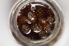 E r Voorraden voor de winter Gezonde snoepjes stock afbeelding