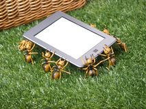 E-reader Tablet Taken By Picnic Ants Royalty Free Stock Image
