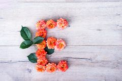 E, roses fleurissent l'alphabet d'isolement sur le fond en bois gris, configuration d'appartement Photos libres de droits
