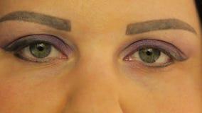 ?e?scy oczy z makija?em ciemny lily kolor zbiory wideo