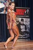 Żeński bodybuilder w triceps czerwieni i pozy bikini Zdjęcia Stock