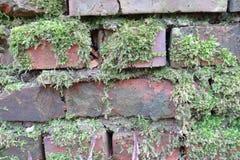 E Stary Brickwork Ściana z cegieł Czerwona krzemian cegła Rozdrabnianie cegła od czasu do czasu zdjęcie stock