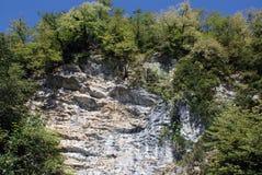 E sulle pietre gli alberi si sviluppano, l'Abkhazia - montagna Fotografia Stock