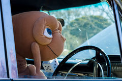 E.T. Driving a Classic American Muscle Car. VICTORIA/AUSTRALIA - SEPTEMBER 2015: E.T. Heading off for a relaxing drive in his muscle car. Taken at a classic car Stock Images