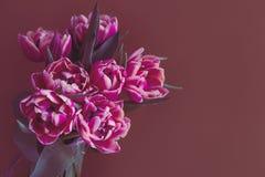 Bello Fondo Rosa Con Il Fiore Del Tessuto Fotografia Stock