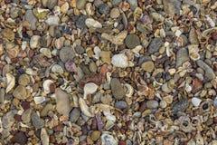 E texture naturelle de texture photographie stock