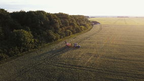 E Traktoren fungerar på kornfält på solnedgången lager videofilmer