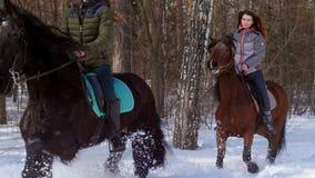 E Twee vrouwen die paarden berijden stock video