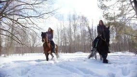E Twee vrouwen die paarden berijden op een sneeuwgrond stock videobeelden