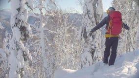 E Una situación del hombre en el pico en un bosque nevoso almacen de video