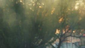 E Vaag beeld bij zonsondergangdag Weinig regen verliet waterdalingen op het venster De auto's gaan en stock video