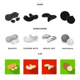 E Verschillende soorten pictogrammen van de noten de vastgestelde inzameling in zwarte, vlakke, zwart-wit stijl royalty-vrije illustratie
