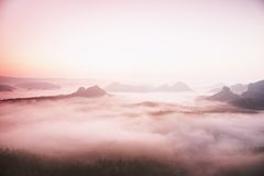 E Vista no vale profundo longo completamente da paisagem fresca da névoa da mola dentro da aurora após a noite chuvosa Foto de Stock