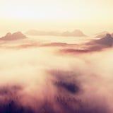 E Vista no vale profundo longo completamente da paisagem fresca da névoa da mola dentro da aurora após a noite chuvosa Fotos de Stock