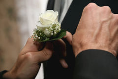 Each helps dress wedding flower for groom suit Stock Images