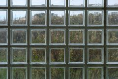 Nature through glass. Impressionistic, best seen large. Stock Images