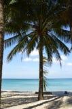 Вeach on the tropical island. stock photo