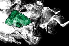 Eagan市烟旗子,明尼苏达状态,美利坚合众国 向量例证