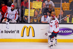 Eager to please Boston Bruins fans. Stock Images