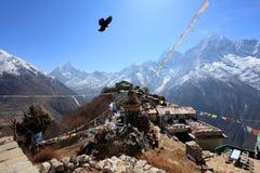 Eagle über dem Dorf in den Bergen von Himalaja Lizenzfreie Stockfotografie