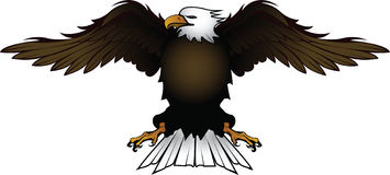 Eagle_1 stock illustration