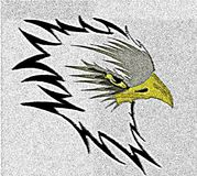 Colorful Artistic eagle illustration. Illustration that represents the head of an eagle Royalty Free Stock Image