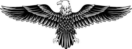 Eagle. Vector image of an eagle with the straightened wings Royalty Free Stock Image