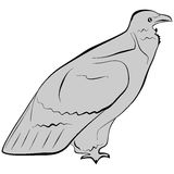 Eagle. An a vector illustration of Eagle. Files included: AI8 EPS and JPG Royalty Free Illustration