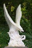 Eagle Royaltyfri Fotografi