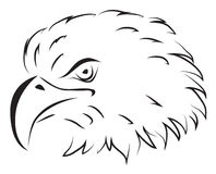 Eagle illustrazione vettoriale