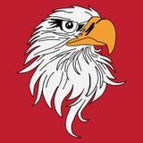 Eagle Zdjęcia Stock