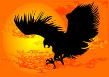 Eagle. Black silhouette of eagle on sky Royalty Free Stock Photography