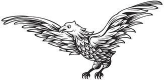 Eagle. Black and white drawing of flying eagle Stock Image
