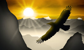Eagle stock illustration